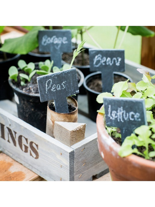 Garden Trading Greenhouse Slate Tags, £12 from John Lewis